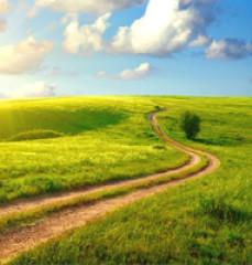 Путь в бездну (обзор)